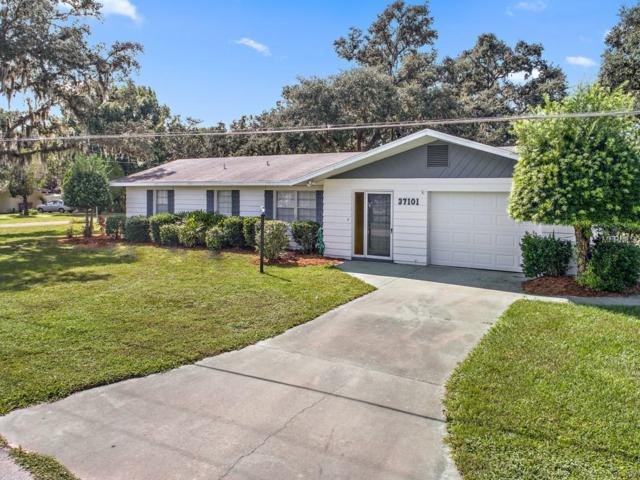 37101 Turner Drive, Umatilla, FL 32784 (MLS #G5007224) :: RealTeam Realty