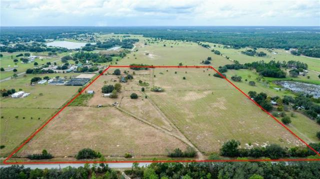 37321 Lake Norris Road, Eustis, FL 32736 (MLS #G5007323) :: The Lockhart Team