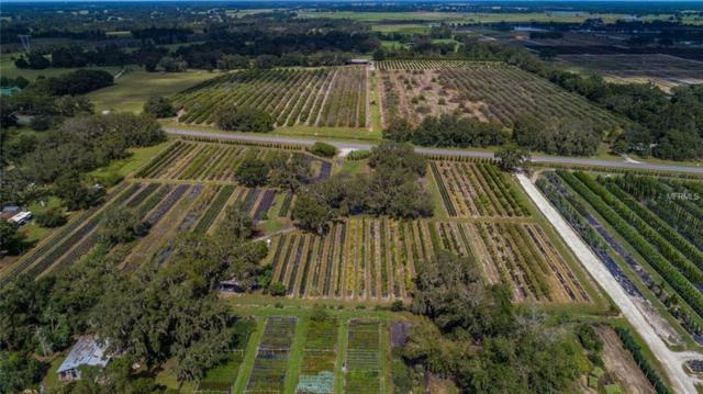 W State Road 50, Groveland, FL 34736 (MLS #G5007381) :: Mark and Joni Coulter | Better Homes and Gardens
