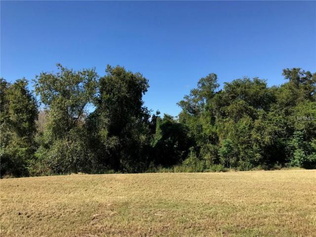 12110 Nest Court Lot 8, Grand Island, FL 32735 (MLS #G5007495) :: Homepride Realty Services