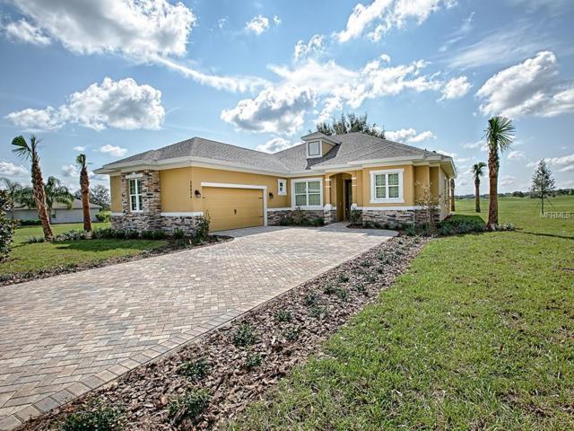 5941 Tangerine Reserve Court, Mount Dora, FL 32757 (MLS #G5007531) :: Team Touchstone