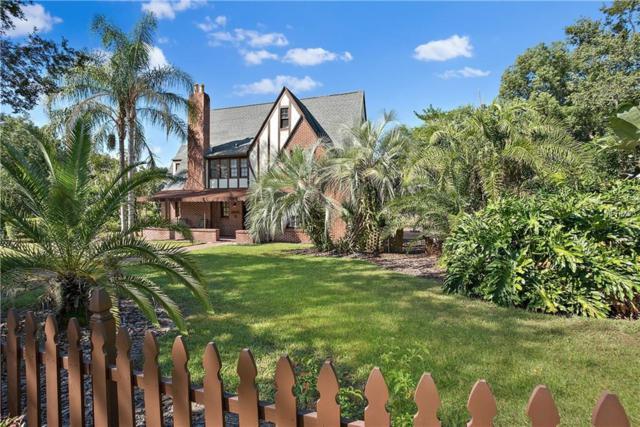 1005 Helen Street, Mount Dora, FL 32757 (MLS #G5007562) :: Premium Properties Real Estate Services