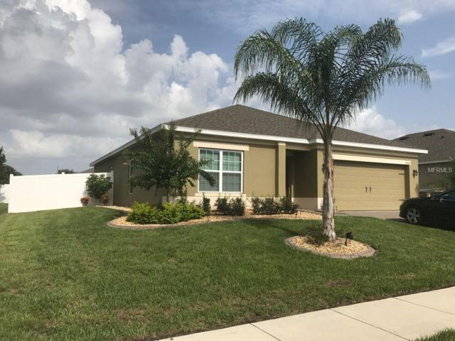 10028 Lenox Street, Clermont, FL 34711 (MLS #G5007601) :: Team Touchstone