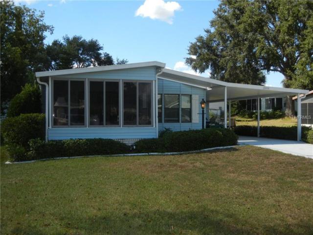 25031 Barrow Hill, Leesburg, FL 34748 (MLS #G5007614) :: Zarghami Group