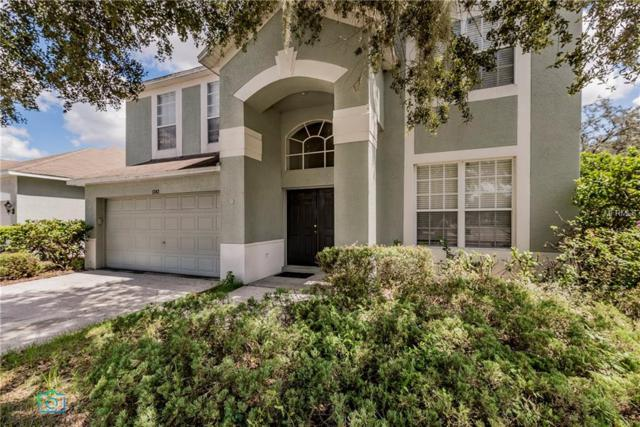 1343 Loretto Circle, Odessa, FL 33556 (MLS #G5007615) :: Team Virgadamo