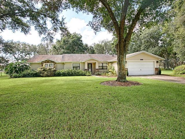 1242 Linda Glen Avenue, Fruitland Park, FL 34731 (MLS #G5007628) :: Team Touchstone