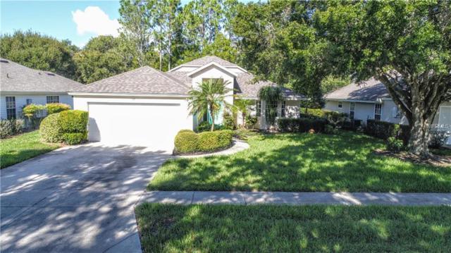 247 Juniper Way, Tavares, FL 32778 (MLS #G5007769) :: Baird Realty Group