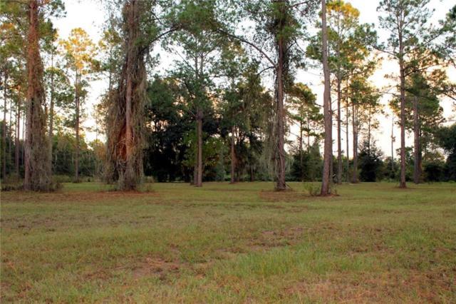 Bonsmara Drive, Groveland, FL 34736 (MLS #G5007971) :: Griffin Group