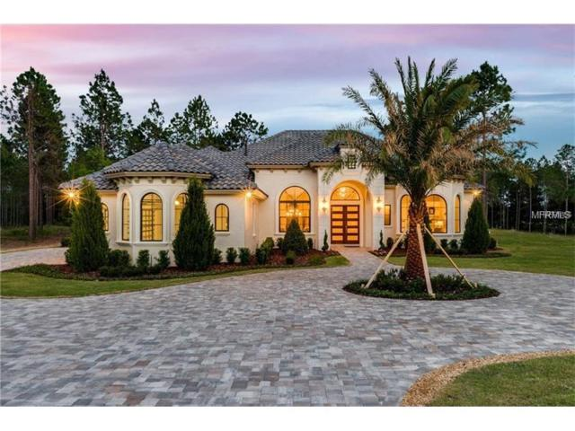 16828 Vinci Way, Montverde, FL 34756 (MLS #G5008030) :: Griffin Group
