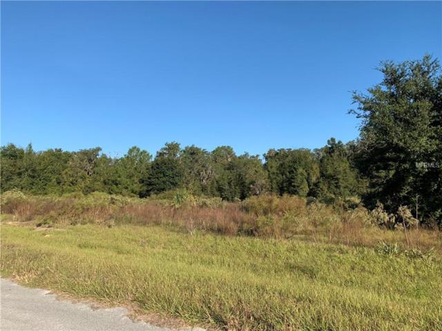 0 Cross Country - Lot 14 Boulevard, Altoona, FL 32702 (MLS #G5008062) :: The Duncan Duo Team