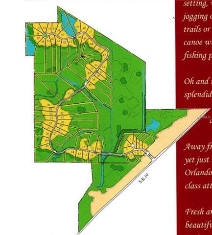 467 Long And Winding Road, Groveland, FL 34737 (MLS #G5008420) :: Dalton Wade Real Estate Group