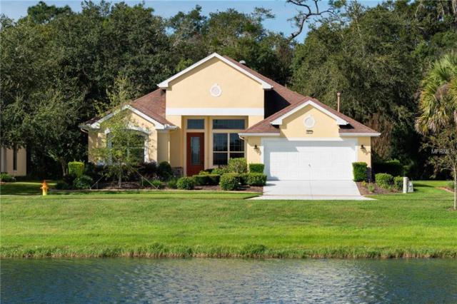8977 Bridgeport Bay Circle, Mount Dora, FL 32757 (MLS #G5008440) :: Griffin Group