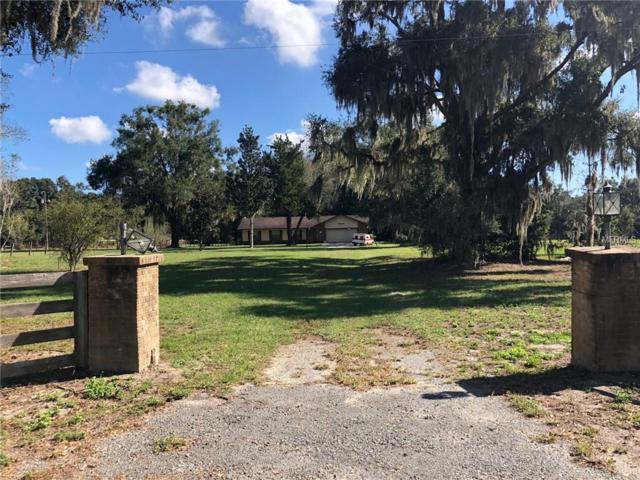 14191 SE 25TH Avenue, Summerfield, FL 34491 (MLS #G5008664) :: Burwell Real Estate