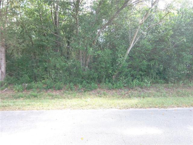 SE 125TH Lane, Belleview, FL 34420 (MLS #G5008684) :: 54 Realty