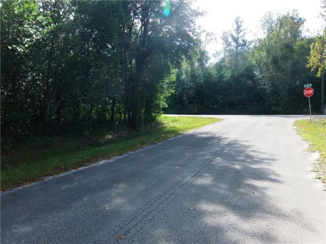 SE 125TH Lane, Belleview, FL 34420 (MLS #G5008688) :: 54 Realty