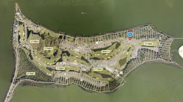 Blue Heron Circle, Tavares, FL 32778 (MLS #G5008694) :: KELLER WILLIAMS CLASSIC VI