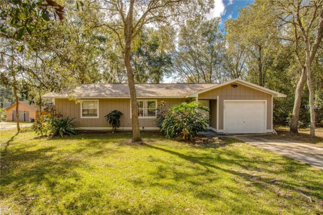 31601 Colby Place, Mount Plymouth, FL 32776 (MLS #G5008720) :: Delgado Home Team at Keller Williams
