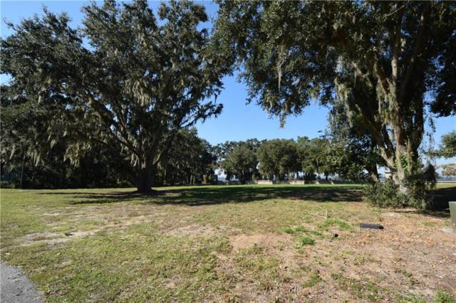 3201 Landing View, Tavares, FL 32778 (MLS #G5008967) :: Gate Arty & the Group - Keller Williams Realty