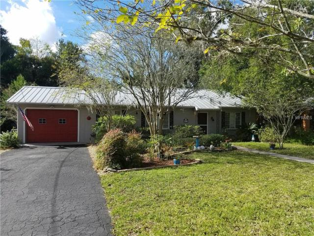 817 N Alexander Street, Mount Dora, FL 32757 (MLS #G5008996) :: Revolution Real Estate
