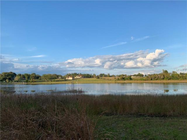Bay Lake Road, Eustis, FL 32736 (MLS #G5009046) :: The Duncan Duo Team