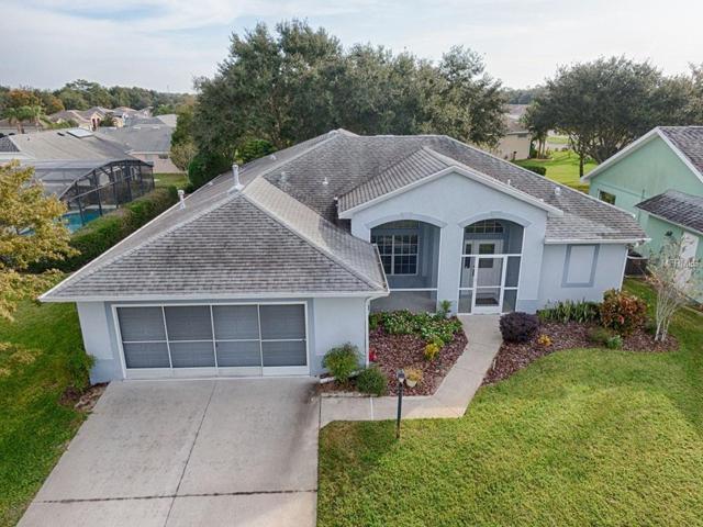 27116 Nature View Street, Leesburg, FL 34748 (MLS #G5009471) :: Revolution Real Estate
