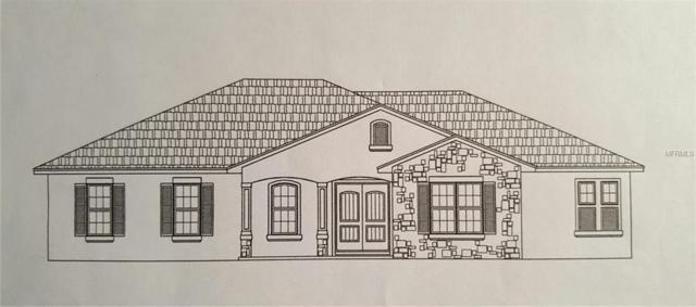 16935 Lakeview Avenue, Umatilla, FL 32784 (MLS #G5009567) :: Revolution Real Estate