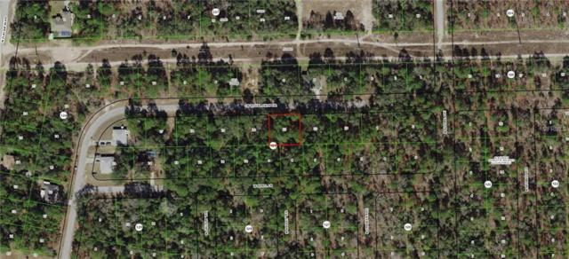 2594 W Royal Palm Drive, Citrus Springs, FL 34434 (MLS #G5009683) :: Florida Real Estate Sellers at Keller Williams Realty