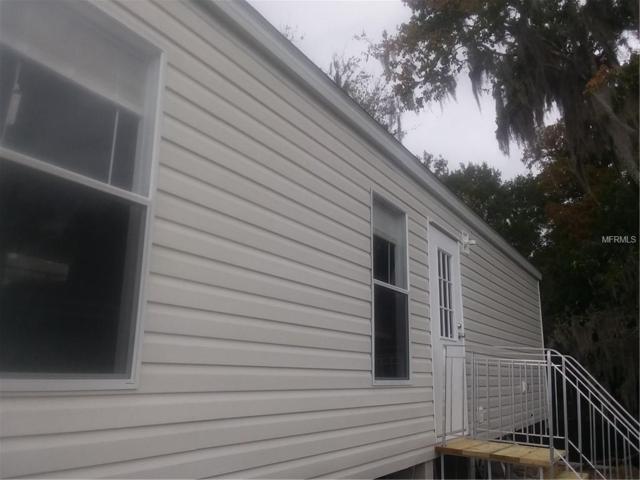 1120 Rue De Dore, Tavares, FL 32778 (MLS #G5009694) :: Team Touchstone