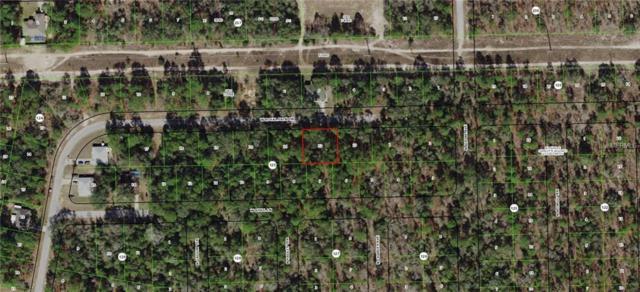 2574 W Royal Palm Drive, Citrus Springs, FL 34434 (MLS #G5009701) :: The Light Team