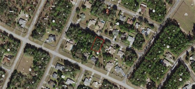 2290 W Autumn Place, Citrus Springs, FL 34434 (MLS #G5009714) :: The Lockhart Team