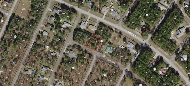 10195 N Conrad Point, Citrus Springs, FL 34434 (MLS #G5009739) :: The Duncan Duo Team