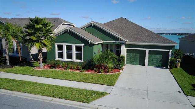 331 Blue Cypress Drive, Groveland, FL 34736 (MLS #G5009763) :: RealTeam Realty