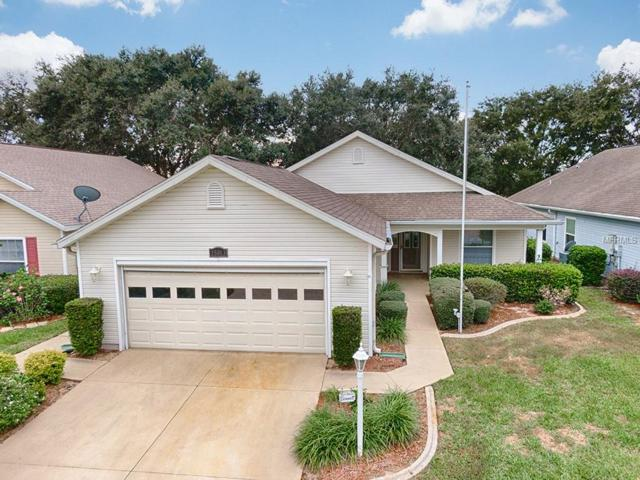 25013 Cranes Roost Circle, Leesburg, FL 34748 (MLS #G5009805) :: The Duncan Duo Team