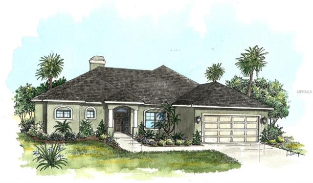 0 Bay Lake Road, Eustis, FL 32736 (MLS #G5009814) :: The Duncan Duo Team