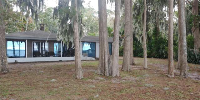 31201 Cove Road, Tavares, FL 32778 (MLS #G5009840) :: Team Touchstone
