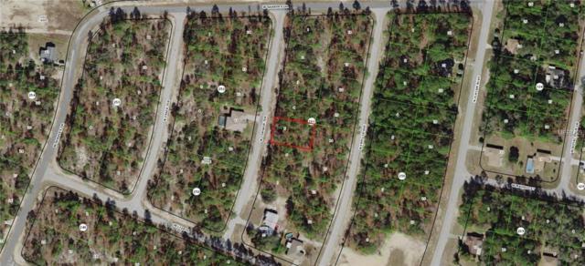 9871 N Corsair Terrace, Citrus Springs, FL 34433 (MLS #G5009943) :: The Duncan Duo Team