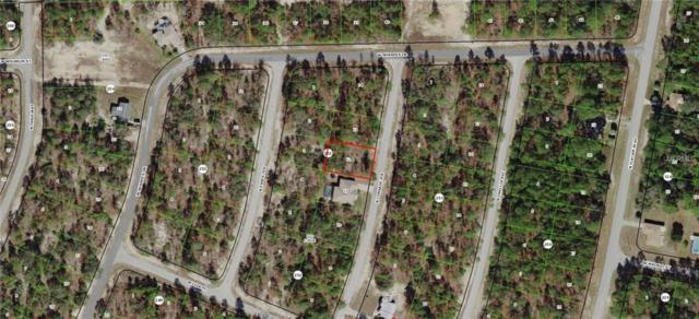 9884 N Corsair Terrace, Citrus Springs, FL 34433 (MLS #G5009952) :: The Duncan Duo Team