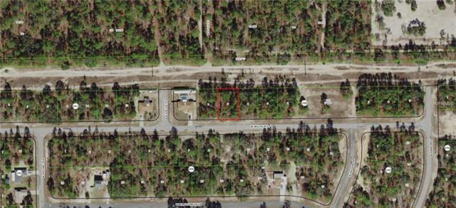 3237 W Wilhelm Street, Citrus Springs, FL 34433 (MLS #G5009958) :: Team Borham at Keller Williams Realty