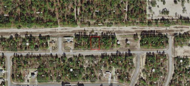 3221 W Wilhelm Street, Citrus Springs, FL 34433 (MLS #G5009959) :: Team Borham at Keller Williams Realty