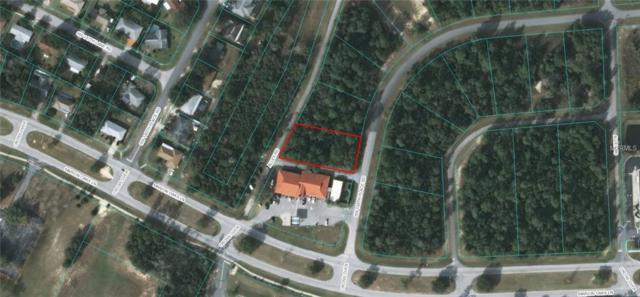 Address Not Published, Ocala, FL 34473 (MLS #G5009978) :: Zarghami Group