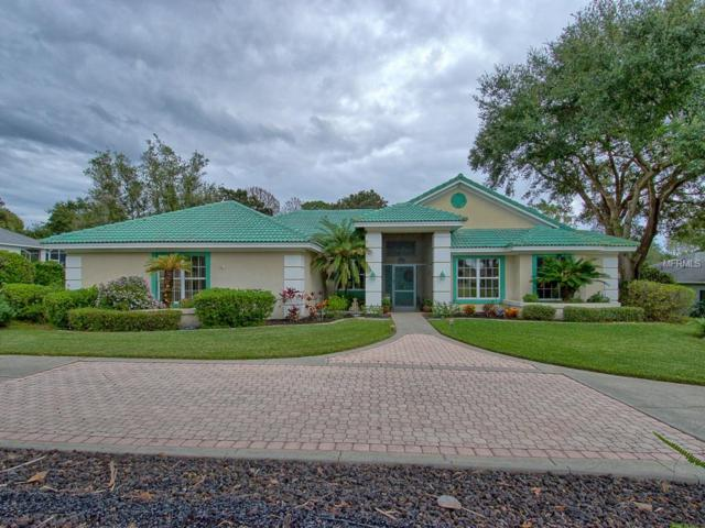 39206 Treeline Drive, Lady Lake, FL 32159 (MLS #G5010145) :: Griffin Group