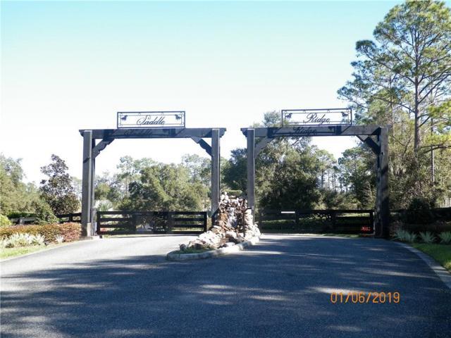 41510 Saddle Ridge Lane, Weirsdale, FL 32195 (MLS #G5010445) :: The Duncan Duo Team