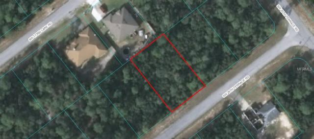 0 SW 29TH TERRACE ROAD, Ocala, FL 34473 (MLS #G5010446) :: Griffin Group