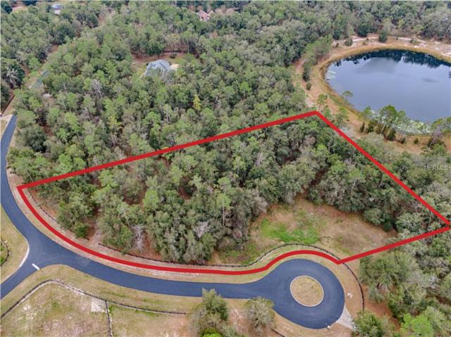 39713 Woodgate Lane, Lady Lake, FL 32159 (MLS #G5010886) :: Mark and Joni Coulter | Better Homes and Gardens
