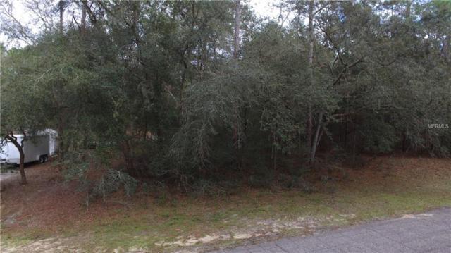 11139 N Sonnet Terrace, Citrus Springs, FL 34433 (MLS #G5010919) :: Homepride Realty Services