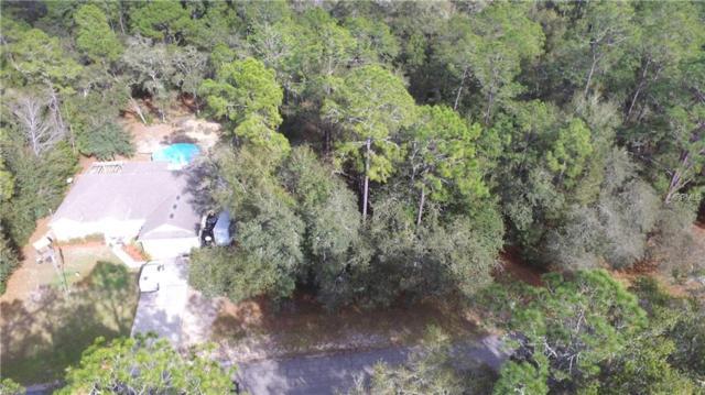 10681 N Biltmore Terrace, Citrus Springs, FL 34434 (MLS #G5010922) :: The Duncan Duo Team