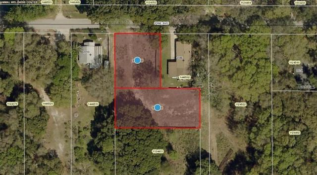 Pine Avenue, Mount Dora, FL 32757 (MLS #G5011007) :: The Duncan Duo Team