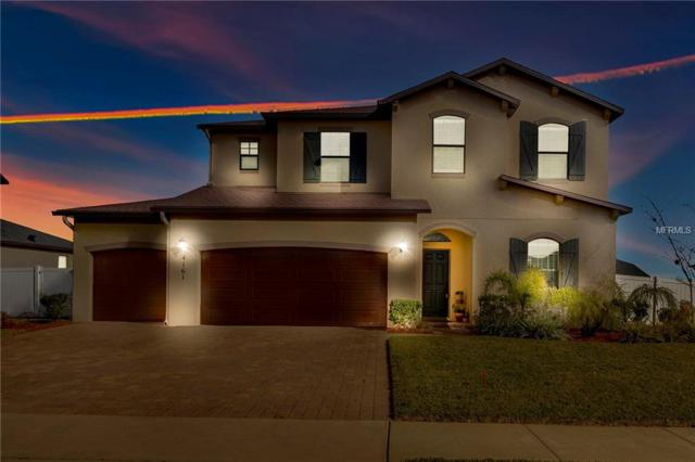 4161 Longbow Drive, Clermont, FL 34711 (MLS #G5011029) :: Bustamante Real Estate