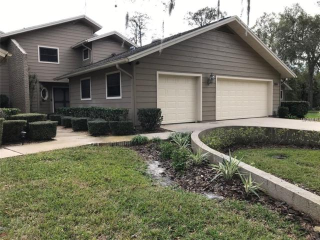 2856 Berwick Drive, Tarpon Springs, FL 34688 (MLS #G5011102) :: Burwell Real Estate