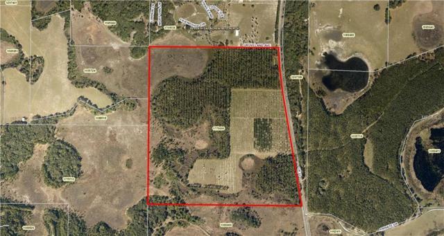 Groveland (Cr 33) Avenue, Groveland, FL 34736 (MLS #G5011107) :: Griffin Group